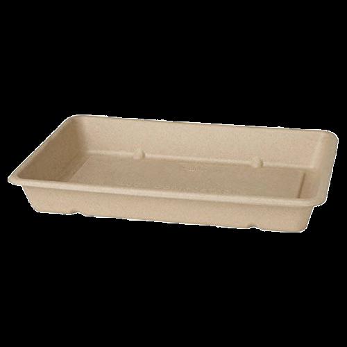 Bagasse Box ecoecho®
